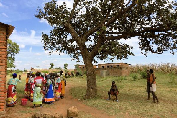 malawi project